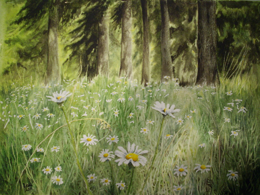 Daisy Days by Lou Conron